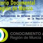Actuaciones de defensa contra inundaciones en la Región de Murcia. Planteamiento general y casos de estudio.